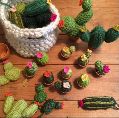Collection of woolly cacti handmade by the Good Home Project