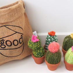 woolly cacti - Home Decor Nz